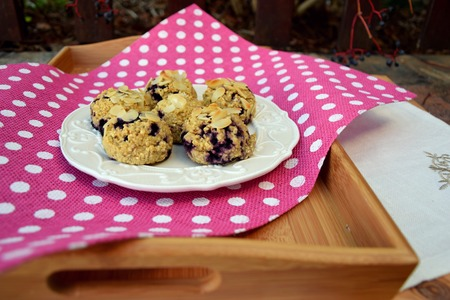 Blueberry oatmeal in a muffin